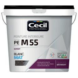 PEINTURE DE FINITION PE M55 MAT